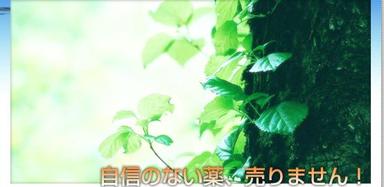 キヨーレオピン|漢方薬局|神戸ファーマシー|神戸ファマシー|神戸市中央区|三ノ宮|薬局